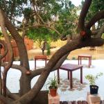 Ongwari Garden